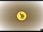 $5. 1/20 oz 9999 Gold - Bullion coin. The Australian Nugget 1993 - Whiptail Wallaby. Elizabeth II. Reeded edge, (Please note that email offers are considered on all coins.)