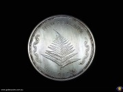 "One ounce fine silver round. ""Aotearoa"", map of New Zealand & Southern Cross. Silver fern. Bullion medallion. (*) (Please note that email offers are considered on all coins.)"